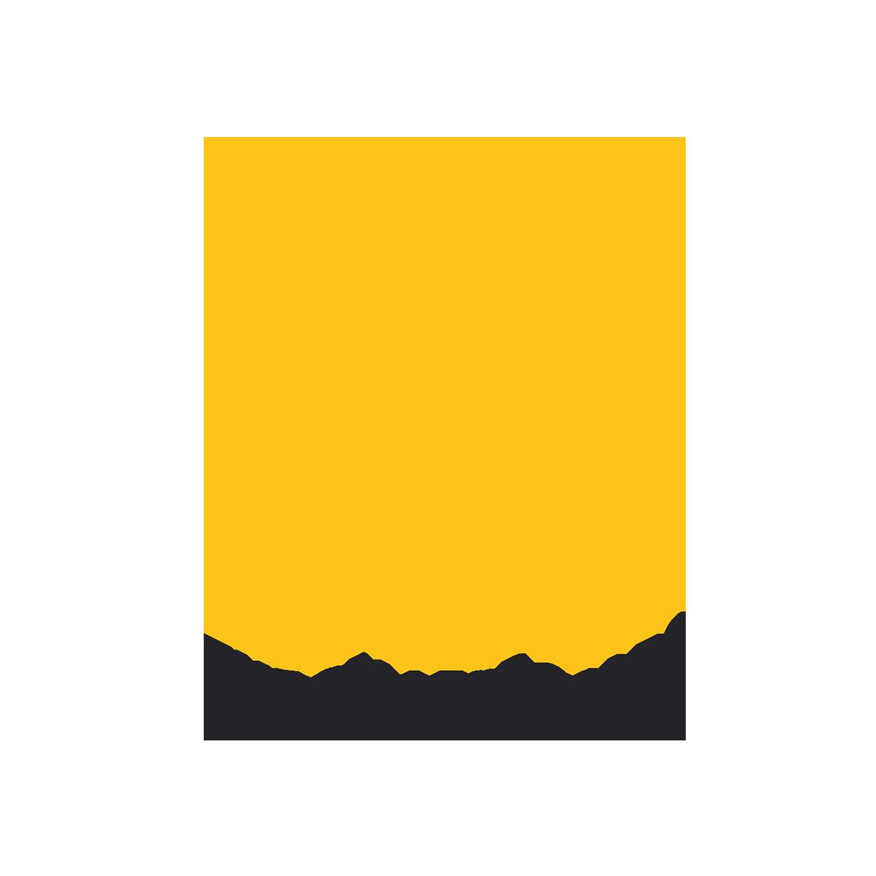 SET for Business CRM Logo